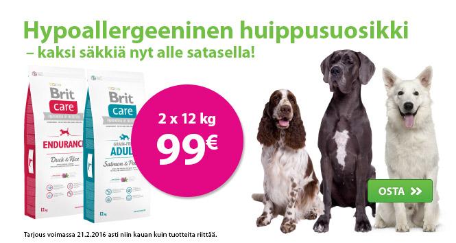 MM02 Brit Care koira