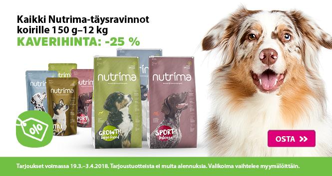 Valiaika-Nutrima-dog