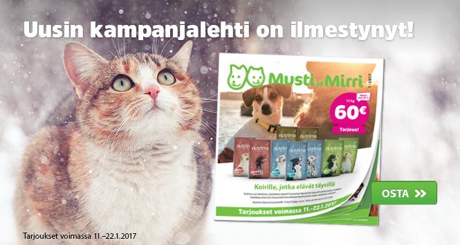 MM01 Kampanja Express1